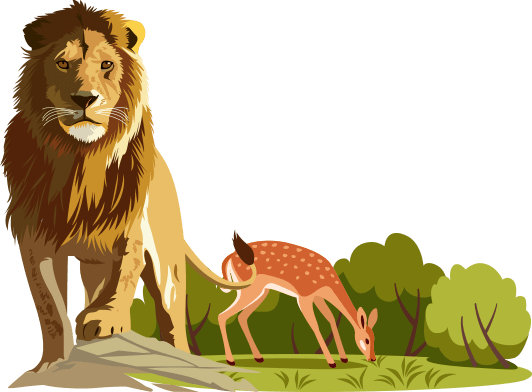 a lion and a deer